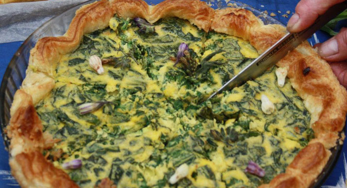Bourrache cuisine salade du jardin aux fleurs de bourrache for Entretien salade jardin